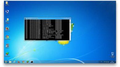 Spyware y malware controlados con netstat