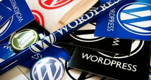 Impedir cambiar de tema en WordPress