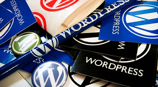 Impedir cambiar de tema en WordPress