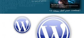 Dynamic Content Gallery, artículos destacados en WordPress