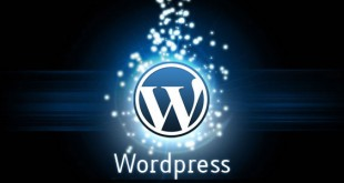 Cinco plugins imprescindibles en WordPress
