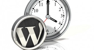 WP Crontrol, para optimizar la base de datos de WordPress
