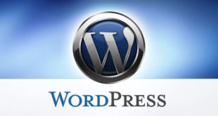 Solucionar el error en WordPress: No tienes suficientes permisos para acceder a esta página