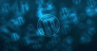 Gestionar la base de datos de WordPress con WP-DBManager