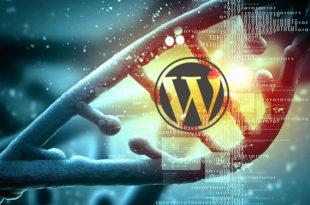 Proceso a seguir para instalar WordPress en un servidor local (ordenador)